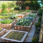 Introduction to Urban Organic Garden
