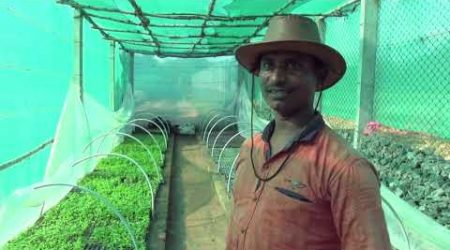 Aquaponics: Sustainable farming for rural India